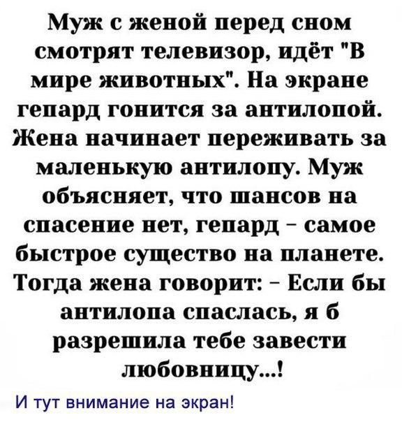Как варить велосипедную цепь в парафине  Сайт Котовского