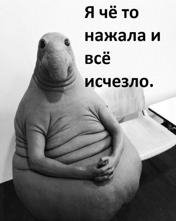 Мемы из жизни