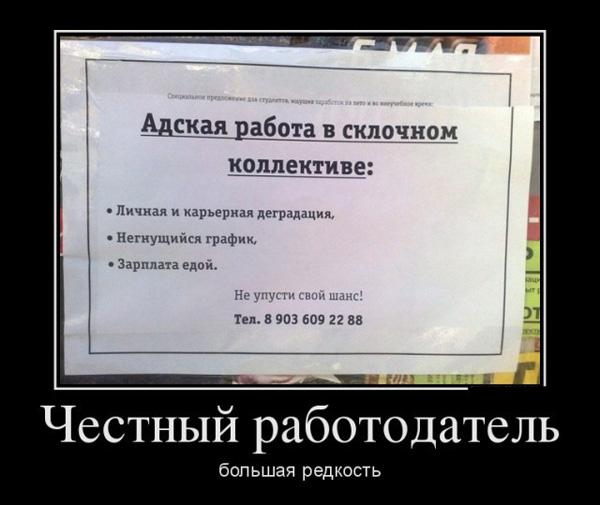 ТОП лучших демотиваторов про работу