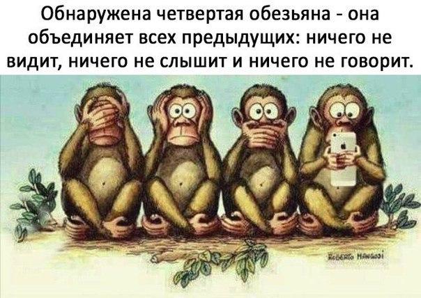 Четвертая обезьяна