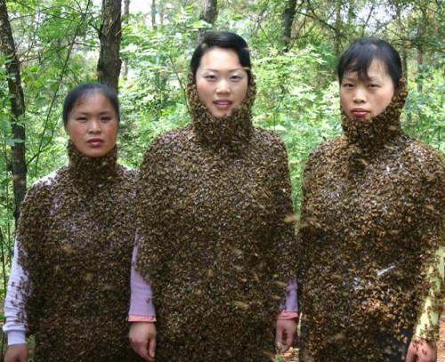 Три сестры, или Пчелинные шубки (ЖЕСТЬ)