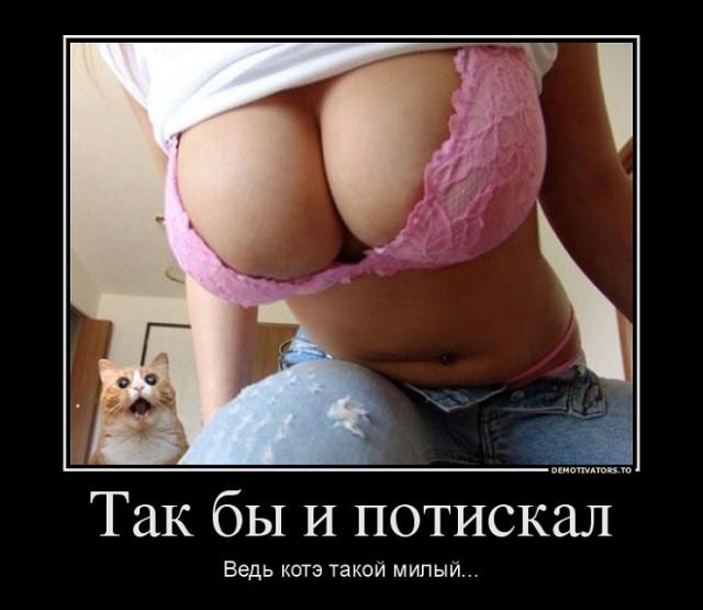 Фото голых писек девушек, красивые женские писки