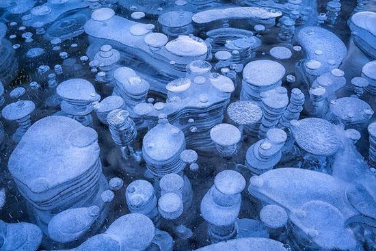 Завораживающие зрелище. Замерзшие пузырьки воздуха в озере