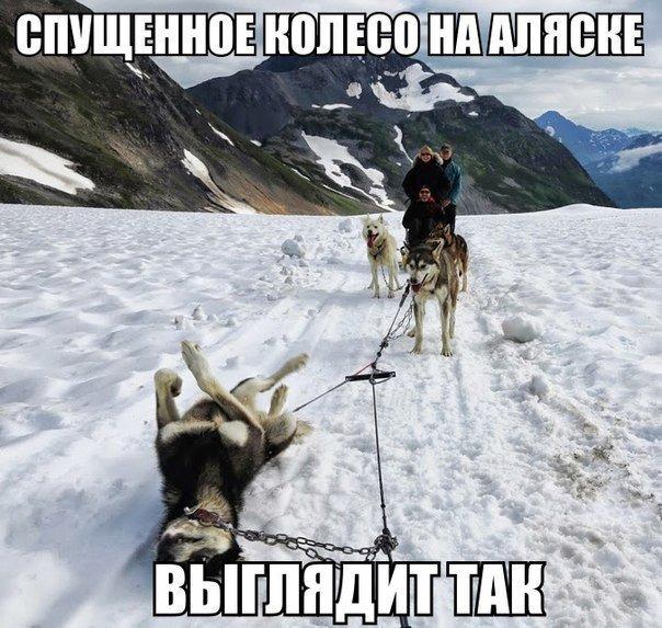 Смешная картинка со спущенными колесами