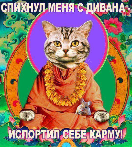 скачать торрент российские рок группы